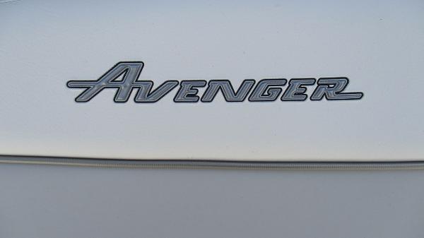 2021 Avenger boat for sale, model of the boat is AV24 & Image # 59 of 63