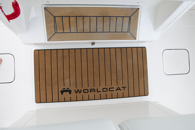 World Cat - 50North