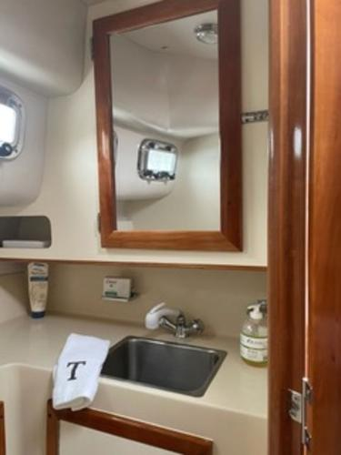 2004 Albin Yachts boat for sale, model of the boat is 28' Tournament & Image # 11 of 36