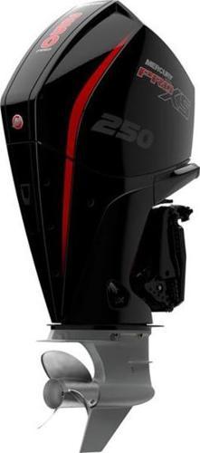 2021 MERCURY 250L Pro XS DTS TorqueMaster 1.75 image