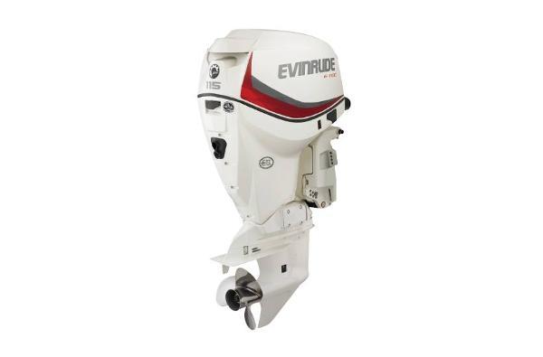 2019 EVINRUDE E115DPXAF image