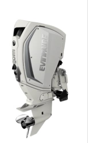 2020 Evinrude H250 HWX image