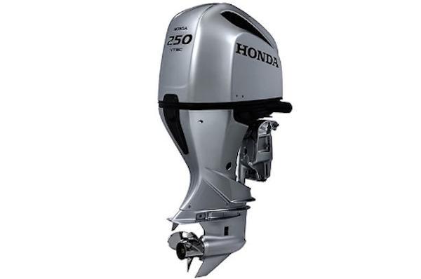 2019 HONDA BF250 image
