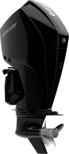 2020 Mercury Marine FourStroke 250 image