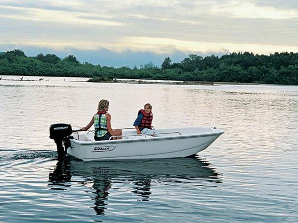 2020 BOSTON WHALER 110 TENDER for sale