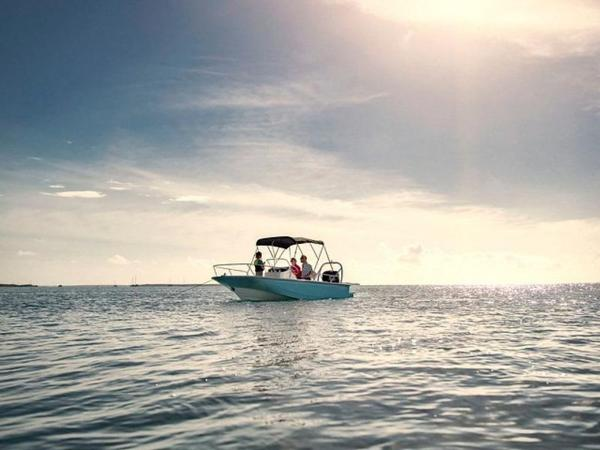 2021 Boston Whaler boat for sale, model of the boat is 170 Montauk & Image # 21 of 86