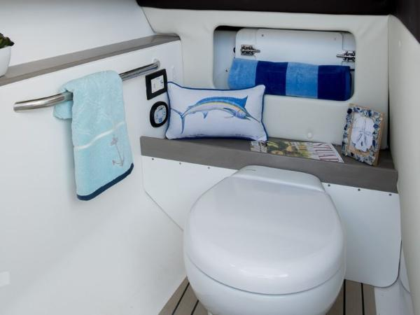 2021 Edgewater boat for sale, model of the boat is 248CX & Image # 10 of 11