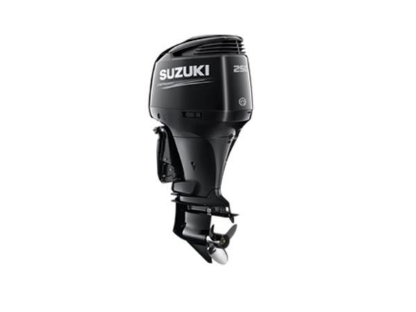 2021 SUZUKI DF250 X image