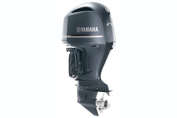 2021 YAMAHA F250 image