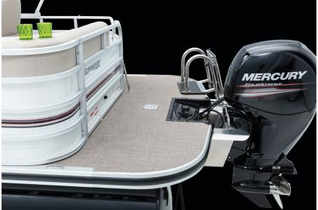 2020 Ranger Boats boat for sale, model of the boat is Reata 220C w/115ELPT 4S CT & Image # 36 of 50