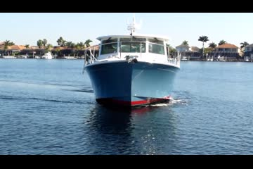 Back Cove 41 video