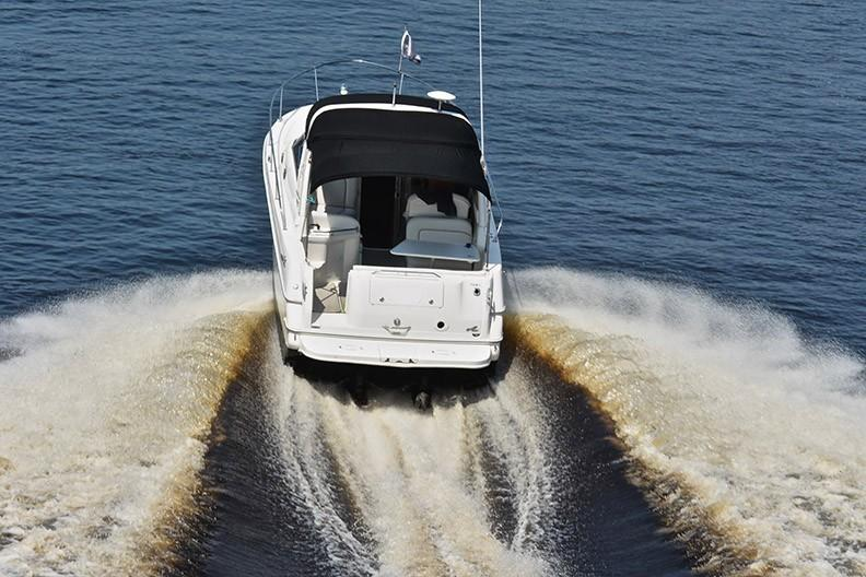Sea Ray 290 Sea Ray - Photo: #5
