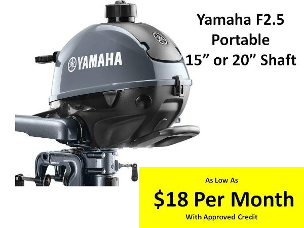 2017 YAMAHA F2.5 image