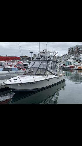 1978 Blackfin boat for sale, model of the boat is 25 Combi & Image # 1 of 9