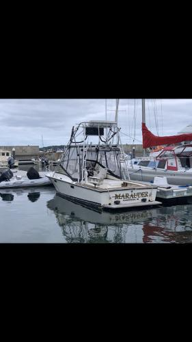 1978 Blackfin boat for sale, model of the boat is 25 Combi & Image # 6 of 9