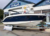 2020 Sea Ray 250 Sun Sport
