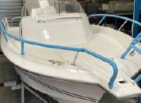 2021 White Shark 228