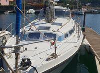 1981 Kirie 33