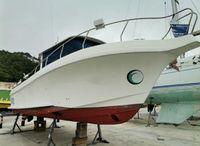 2014 Silcar 980 Sea Ranger