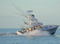2021 Release Boatworks 36 Express