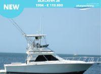 1994 Blackfin 38 Convertible