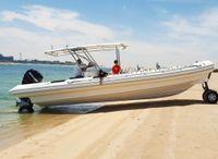 2021 Ocean Craft Marine Transport and Tour 9.5M