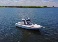 1989 Blackfin 29 Custom Combi