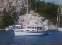 1981 Schucker Custom 440