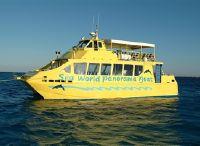 1999 Catamaran Custom