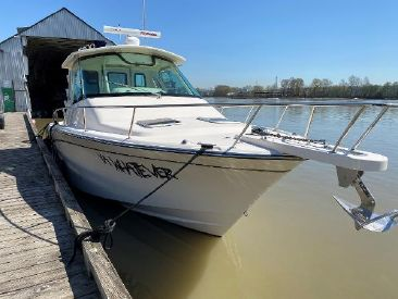 2015 33' Grady-White-33 Express New Westminster, BC, CA