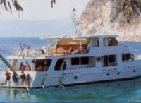 1993 Steel Cruiser