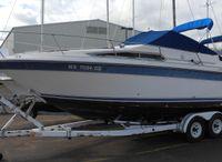 1991 Sea Ray 250 DA