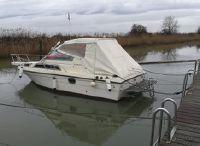 1983 Aquaviva seaborn