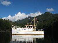 1995 Custom 30' steel trawler/tug