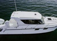 2021 ArrowCat 320 Coupe