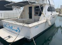 1981 Bertram 42 Flybridge Motor Yacht