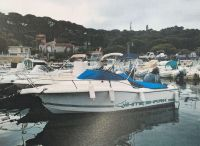 2003 White Shark 206