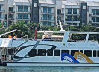 2012 Catamaran Power Catamaran