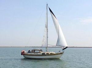 1986 Custom Marina 85