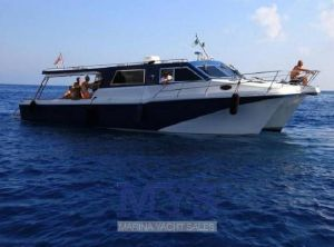2008 Custom Cougar Catamarans 40 Ferry Hardtop