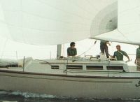 1984 S2 9.1