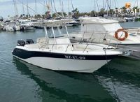 2009 Sea Fox 256CC Pro Series