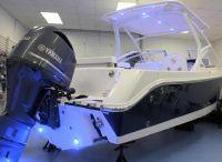 2022 Edgewater 248 CX
