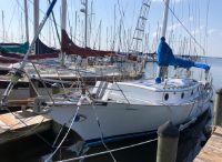 1984 Herreshoff Tortola-Trawler Nereia 36