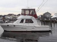 1988 PT Sportfish