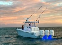 2019 Invincible 36 Open Fisherman