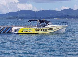 2009 Custom Water Taxi OX-YOKE