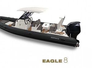2021 Brig Eagle 8
